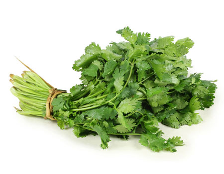 cilantro-organic-iqf-USA-supplier