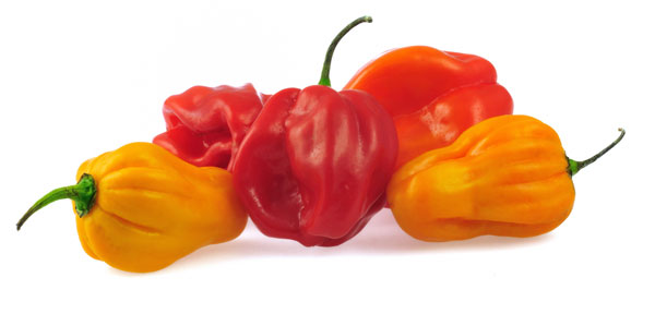 habaneros-peppers-chiles-IQF-diced-puree-USA-supplier