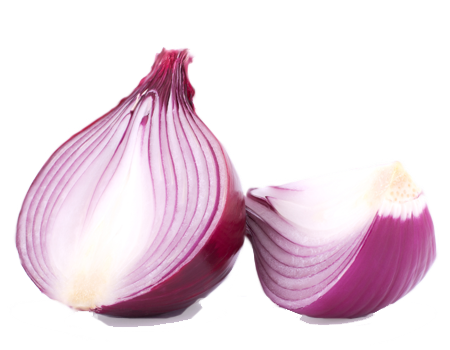 red-onion-organic-supplier-usa